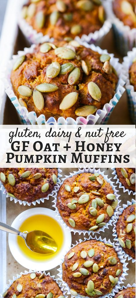 Gluten free oat and honey pumpkin muffins made with simple natural ingredients. Easy to make, the perfect healthy snack, nut free and dairy free too. Recipe via nourisheveryday.com